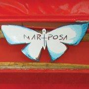 Mariposa Manaus
