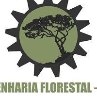 Engenharia Florestal UnB