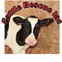 Cattle Rescue Inc