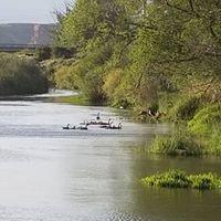 Green River - River Festival