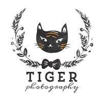 Tiger. Photography.