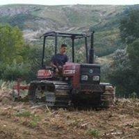 Azienda Agricola Cristian Giovagnoli