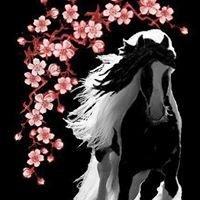 Cherry Blossom Gypsies Pony Camp www.ponycamp.net