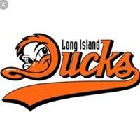 LI Ducks Stadium