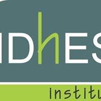 IDhES  Instituto