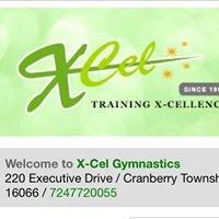 X-Cel Gymnastics & Dance