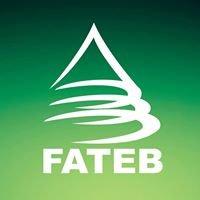 Fateb - Faculdade de Telêmaco Borba