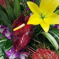 Cox Floral Expressions, Inc