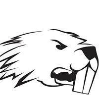 Beaver Crossfit