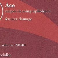 Ace Carpet Cleaning Upholstery