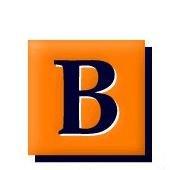 Bradigan's Inc