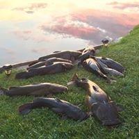 Robinson Catfish Lake