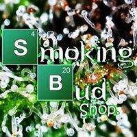 Smoking Bud Growshop