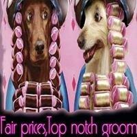 Pfafftown Pet Pawlor