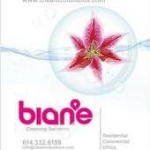 bian'e Cleaning Services