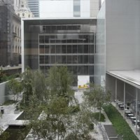 MOMA Museum - NY