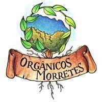 Orgânicos Morretes