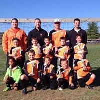 Wheelersburg Youth Soccer