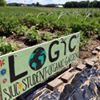 LOGIC SIU Student Garden