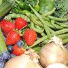 East Lothian Roots & Fruits