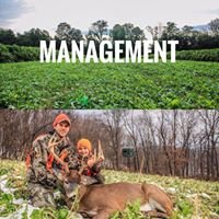 Drop-Tine Wildlife Consulting
