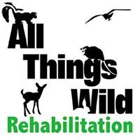 All Things Wild Rehabilitation, Inc.