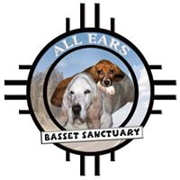 All Ears Basset Sanctuary
