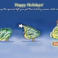 Eat n Park Christmas Star