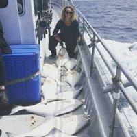 Ocean Sportfishing Charters