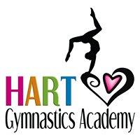 Hart Gymnastics Academy - King