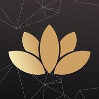 Lotus - Ubá