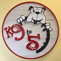 K9 to 5 Doggie Daycare