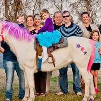 Ponies Plus (Pony Parties)