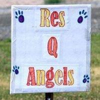 Res Q Angels Animal Rescue