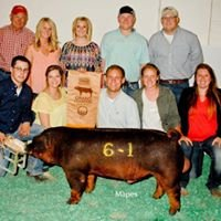 Iowa State University Swine Teaching Farm