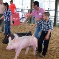Hicks Show Pigs