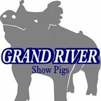 Grand River Showpigs