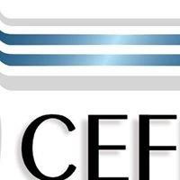 CENTRO FEDERAL DE EDUCAÇÃO TECNOLÓGICA DE GOIÁS - CEFET-GO