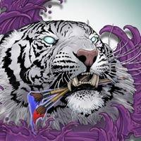 White Tiger Art Studio