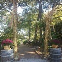Schorr Lake Vineyard & Winery
