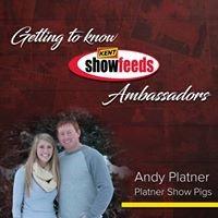 Platner Show Pigs