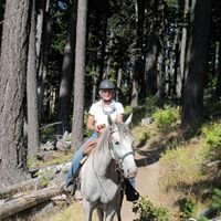 White Horse Vale Lipizzans