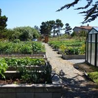 Bandon Good Earth Community Garden