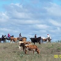 Panther Creek Trail Rides
