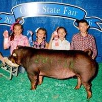 Heavilin Show Pigs