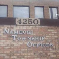 Nameoki Township