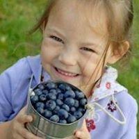 Bryant Blueberry Farm