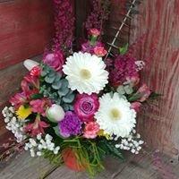 Luzetta's Flowers