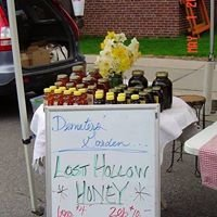 Lost Hollow Honey