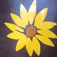 Radiance Sun Studios